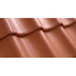 Benders Vienbangė S (Molio raudonumo)