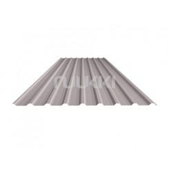 Trapecinis profilis sienoms T20 (Ruukki® 30 Plus)